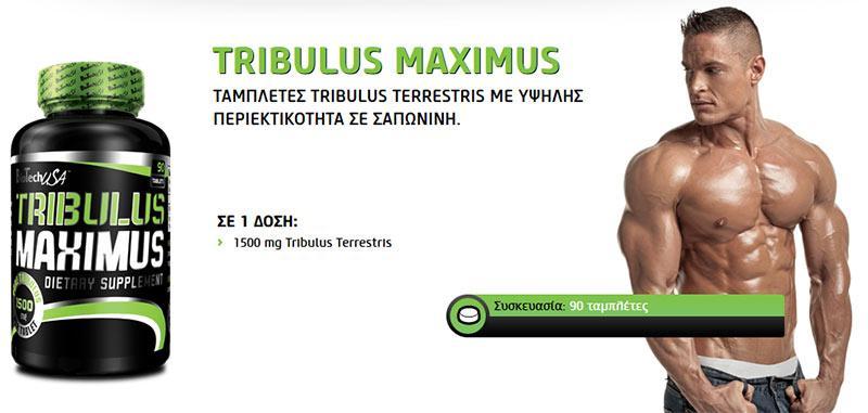 Biotech USA - Αύξηση Τεστοστερόνης & Tribulus - Tribulus Maximus 90 tablets