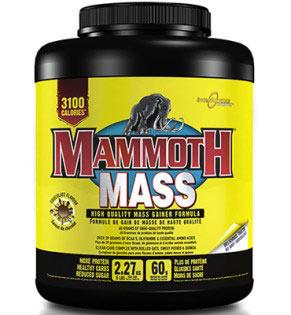 interactive-nutrition-mammoth-mass-2270