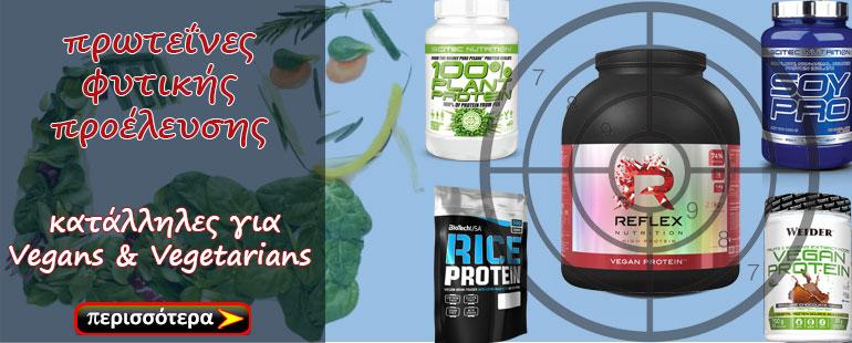 BANNER-PLANT-PROTEINS-2
