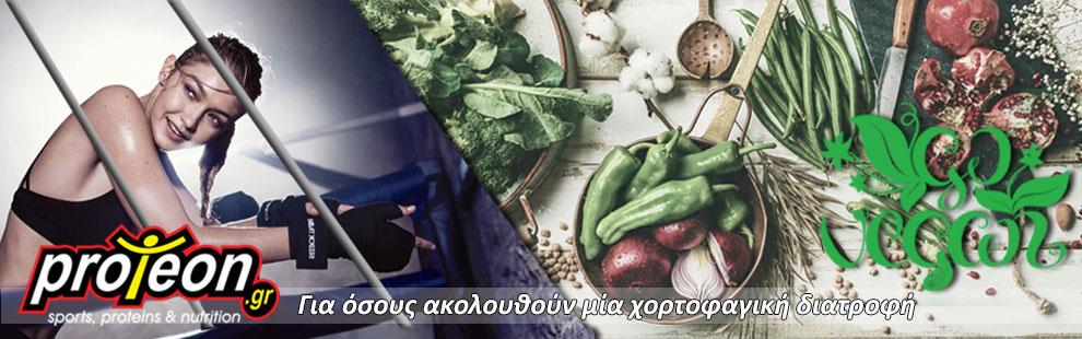 Front-Banner-Vegan-Diet-2
