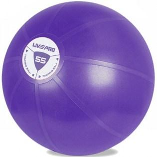 Core-Fit-Ball-55