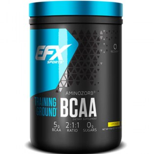 EFX-Training-Ground-BCAA