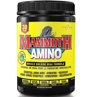Interactive-Nutrition-Mammoth-Amino