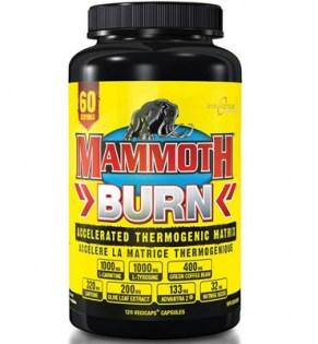 Interactive-Nutrition-Mammoth-Burn-Caps