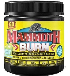Interactive-Nutrition-Mammoth-Burn