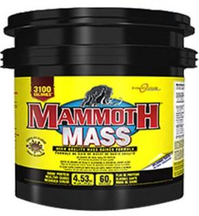 Interactive-Nutrition-Mammoth-Mass-4530