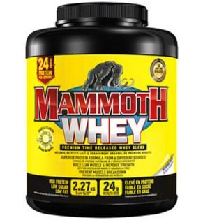 Interactive-Nutrition-Mammoth-Whey-5lb