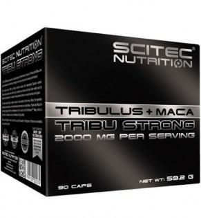 Scitec-Tribu-Strong