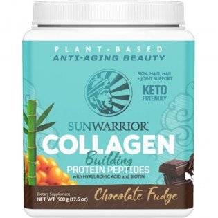 Sunwarrior-Collagen-Building-Protein-Peptides-Chocolate-Fudge