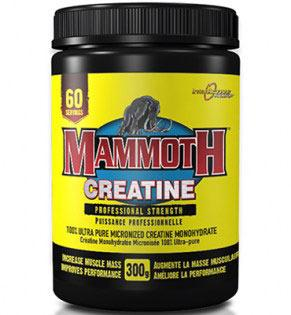 interactive-mammoth-creatine