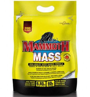 interactive-nutrition-mammoth-mass-6800